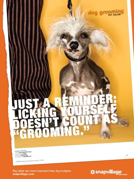 SnapVillage Dog Ad